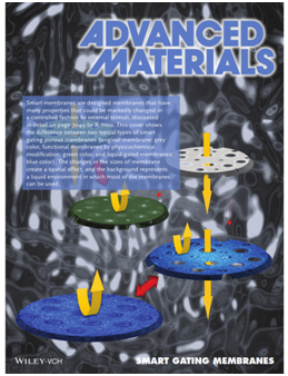 Smart Membranes: the concept, development, preparation methods and application of gating multi-scale pore/channel-based membranes