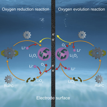 Controlling Reversible Expansion of Li2O2 Formation and Decomposition by Modifying Electrolyte in Li-O2 Batteries