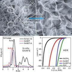 In Situ Electrochemical Production of Ultrathin Nickel Nanosheets for Hydrogen Evolution Electrocatalysis