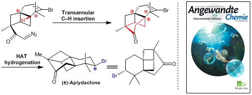 Total Synthesis of Aplydactone by a Conformationally Controlled C−H Functionalization