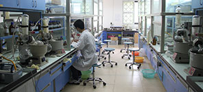 State-Province Joint Engineering Laboratory of Targeted Drugs from Natural Products (Xiamen University)
