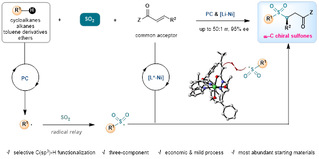 [Nature Communications] Photocatalytic three-component asymmetric sulfonylation via direct C(sp3)-H functionalization