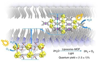 [Nature Chemistry] Metal–organic frameworks embedded in a liposome facilitate overall photocatalytic water splitting