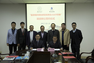 XMU partners with pharmaceutical industry to develop drugs that help repair and regenerate damaged tissues